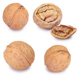 Walnuts set  on the white. Clipping Path Royalty Free Stock Images