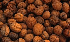 Walnuts in a shel. L, folded one on the other Royalty Free Stock Photos