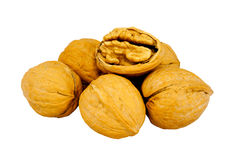 Walnuts in shell Stock Images