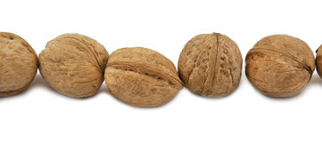 Walnuts in the shell Stock Image