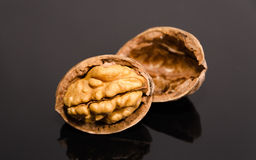 Walnuts in shell Royalty Free Stock Images