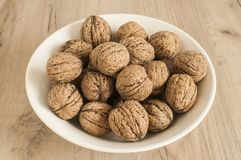 Walnuts in shell closeup Royalty Free Stock Photography