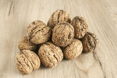 Walnuts in shell closeup Royalty Free Stock Photo