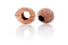 Walnuts shell with holes Stock Images