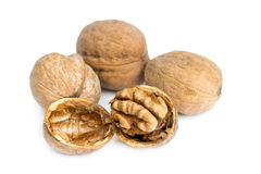 Walnuts in shell Royalty Free Stock Photo