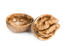 Walnuts in shell Stock Image