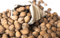 Walnuts in shell Royalty Free Stock Image