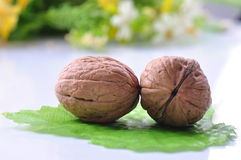 Walnuts with shell Stock Photos