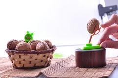 Walnuts with shell Stock Photography
