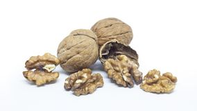 Walnuts and shell Royalty Free Stock Photography