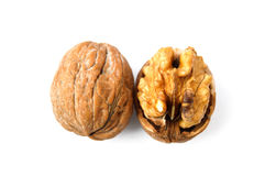 Walnuts. Shelled walnuts and walnut cracking tool Royalty Free Stock Images