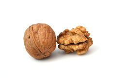 Walnuts. Shelled walnuts and walnut cracking tool Stock Image