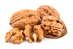 Walnuts and shelled walnuts on white background Stock Photo