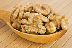 Walnuts. Shelled walnuts in wooden spoon close up royalty free stock image
