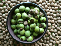 Walnuts with shells. In bowl Royalty Free Stock Photo