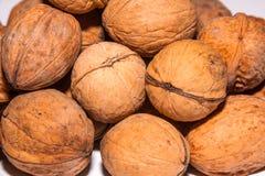 Walnuts in shells. Walnut shells closeup Stock Images