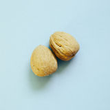 Walnuts on skyblue background. Top view royalty free stock photo