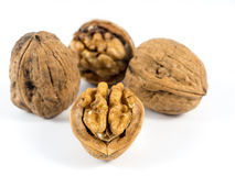Walnuts. Some open and complete walnuts Stock Photography