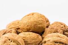 Walnuts. Some walnuts with white background Stock Images