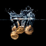 Walnuts splash Royalty Free Stock Photos