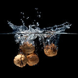 Walnuts splash Royalty Free Stock Photo