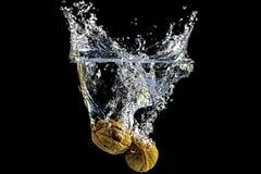 Walnuts splash Royalty Free Stock Images
