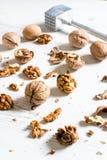 Walnuts splashed Stock Photos