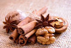 Walnuts, Star Anise and Cinnamon on the Burlap Background Stock Photos