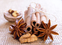 Walnuts, Star Anise and Cinnamon on the Burlap Background Royalty Free Stock Photography