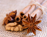 Walnuts, Star Anise and Cinnamon on the Burlap Background Stock Image