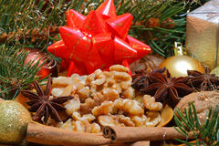 Walnuts and star anise Royalty Free Stock Images