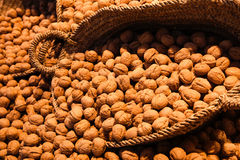 Walnuts on store shelves Stock Images
