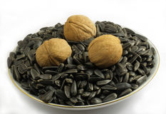 Walnuts and sunflower seeds Stock Image