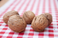 Walnuts on Royalty Free Stock Photography