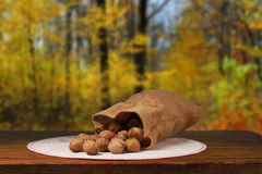 Walnuts on Table Stock Images