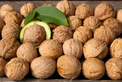 Walnuts. On the table with leaves Stock Images