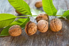 Walnuts on table Royalty Free Stock Photo