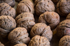 Walnuts on the table. Royalty Free Stock Photo