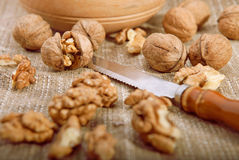 Walnuts on tablecloth Royalty Free Stock Photo