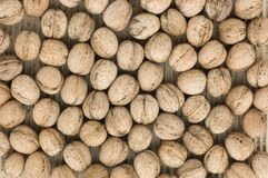 Walnuts texture Royalty Free Stock Images