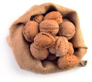 Walnuts in the tissue sac Stock Photo