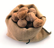 Walnuts in the tissue sac Royalty Free Stock Photo