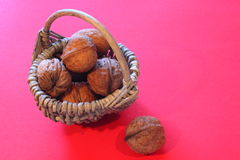 Walnuts to st nicholas Royalty Free Stock Images