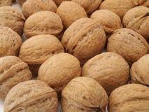 Walnuts, von royalty free stock photos