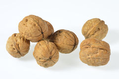 Walnuts. Walnut against a white background Stock Image