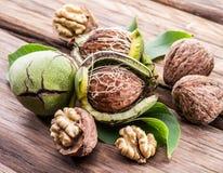 Walnuts and walnut kernels. Royalty Free Stock Image