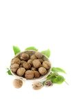 Walnuts with walnut leaves in a basket Stock Photos