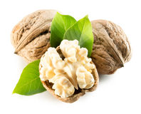 Walnuts with walnut nucleus isolated on the white background Stock Images