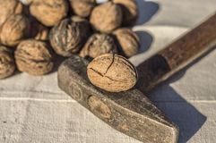 Walnuts whit a hammer Stock Photography