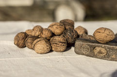 Walnuts whit a hammer Royalty Free Stock Image